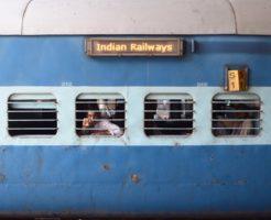 ここが変だよインド人!インド人の生態を解説します